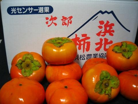 浜松産 次郎柿