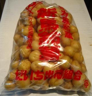 三方原台地(ダイチ)の新馬鈴薯<br>*2月〜春まで
