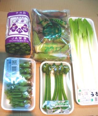 山菜*2月以降